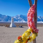 Not Auschwitz, but Manzanar-America's Concentration Camp
